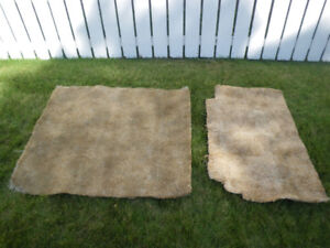 Carpet and underlay to give away