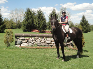 EC Certified Coach/Centered Riding Instructor & Judge Available