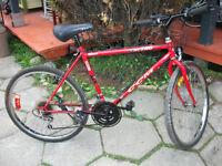 velo ccm roues 26 pouces
