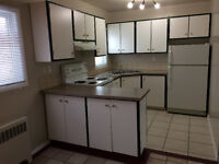 Centrally located 2 BR-NEWLY RENOVATED a must see!