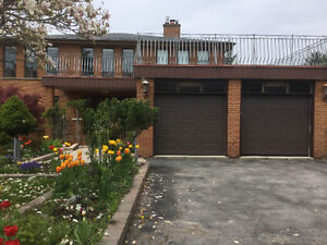 Beautiful house for rent at Weston Rd /401