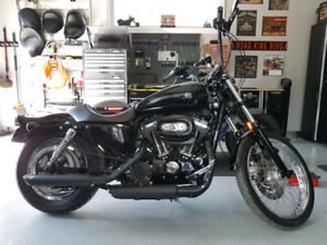Harley sportster 1200C  2005