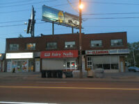 Spacious North York 3 bedroom, TTC and Close to All Amenities