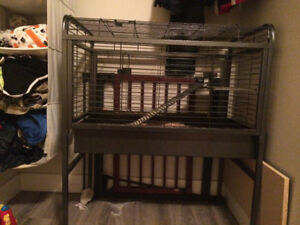 Ferret/hedgehog/bunny Cage