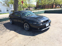 2001 Ford Mustang Cobra Coupe (2 door)