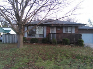 Available for rent Feb 1st in central Collingwood