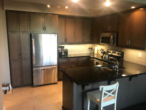 Downtown River Mill Condo For Rent