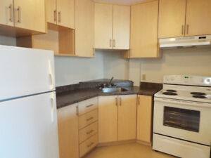 Newly Renovated Bachelor Available Feb 1st - 1st mth 1/2 price