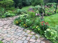 Lawn Mowers / Gardeners