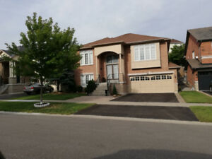 """UNIQUE OVERSIZED """"MOVE-IN READY"""" 4 bdrm BUNGALOW w/3 WALK-OUTS!!"""