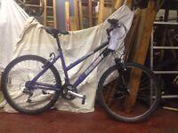 Raleigh FreeRide ladies mountain bike