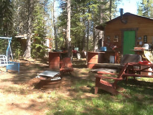 Quiet private cabin, fully equiped ,on creek leading to lake
