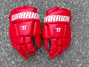 Lacrosse Equipment (player and goalie)