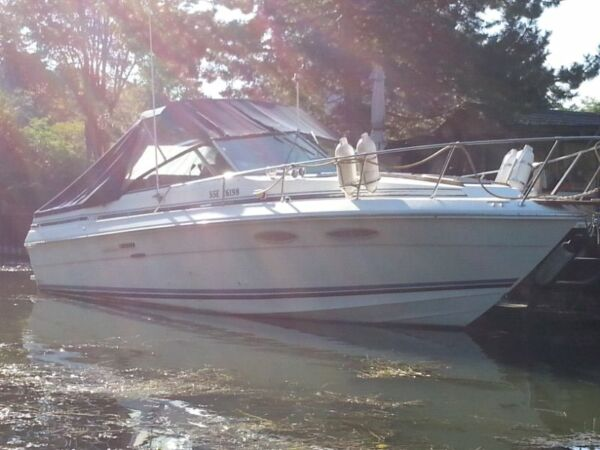 Used 1986 Sea Ray Boats 270 Amberjack