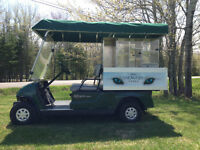 Golf Car - 2005 Yamaha Fairway Lounge Gas