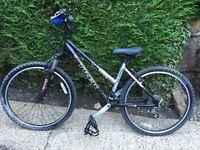 Trek girls mountain bike 3900