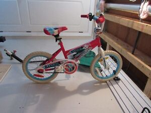 """16"""" Red/Blue Illusion Supercycle"""