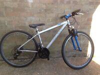 Marin mountain bike.