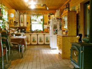 Cozy Home for rent in rural Princeton, BC