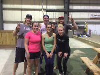 Co-Ed Adult Beach Volleyball Leagues, Indoors! Brantford, On