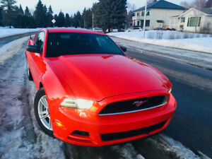 2014 Ford Mustang V6 (Clean,Low 32km,includes WINTER TIRES&RIMS)