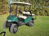Wow fall special great deal for a 2014 custom cart