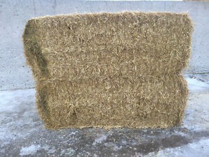 Straw for sale large square bales London Ontario image 1