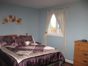 beautiful 3 beds/2 baths on private lot O'Donnell's, SMB, NL St. John's Newfoundland image 6