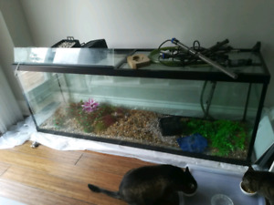 155 GALLON AQUARIUM + ACCESSORIES - $400 OBO