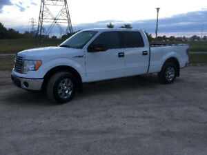 SAFETIED 2012 FORD F-150 XLT|XTR 5.0L CREW CAB