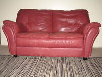 LEATHER LOVESEAT AND AREA RUG