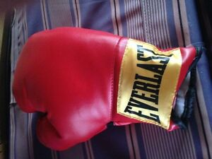 Everlast Boxing Gloves Teens / Adults