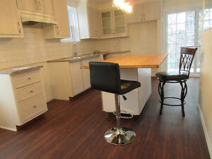 NICE 3 BDRM APARTMENT (CONDO STYLE), NEAR DNTOWN, UNFURNISHED