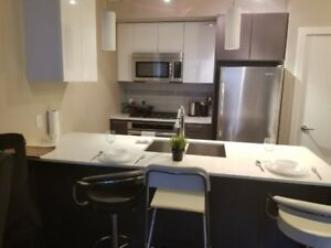 One Bedroom Fully Furnished Condo/ Short term available