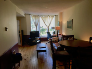 Furnished Downtown Condo (1 BR)