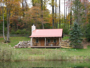 Isolated cabin for rent