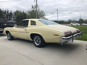 1973 Pontiac Le Mans Coupe (2 door)