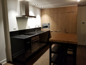 New Condo furnished 21e Arrondissement 3 1/2 for rent