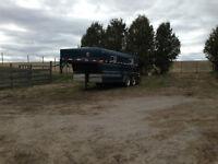 16' Slant load horse trailer.