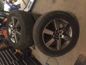 Rims with tires mounted ready to go!