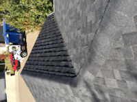 Roof repairs and gutter cleaning