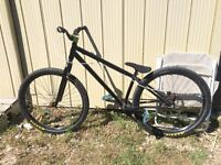 Specialized p2 custom Dirt jumper