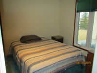 McKenzie Lake SE shared basement with Room for rent.