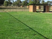 Swan Valley Agistment - DIY + PART BOARD + FULL BOARD Henley Brook Swan Area Preview