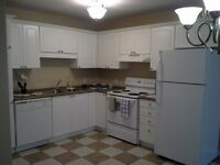 630 Millidge Ave - 5 Appliance Suite - Special Price !