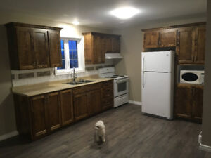 'NEW' -ONE BEDROOM APARTMENT FOR RENT