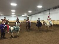Horse Riding Lessons ages 5 to adult, all levels/disciplines