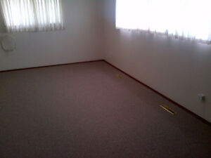 North West Edmonton 2 bedrooms Basement Suite for rent Edmonton Edmonton Area image 7