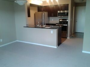 APARTMENT FOR RENT-$1300/month-5810 Mullen Place(Terwillegar)