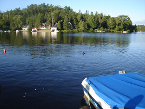 Beautiful and big 1-bedroom apartment access to lake and montain